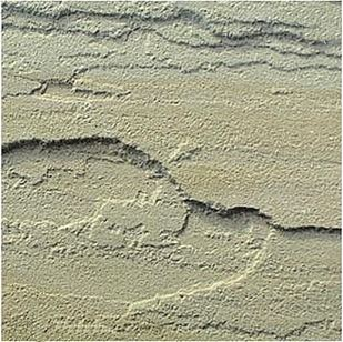 Picture of I Sandstone Natural Face Tint Mint Tiles